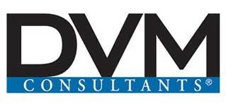 DMV Consultants Home